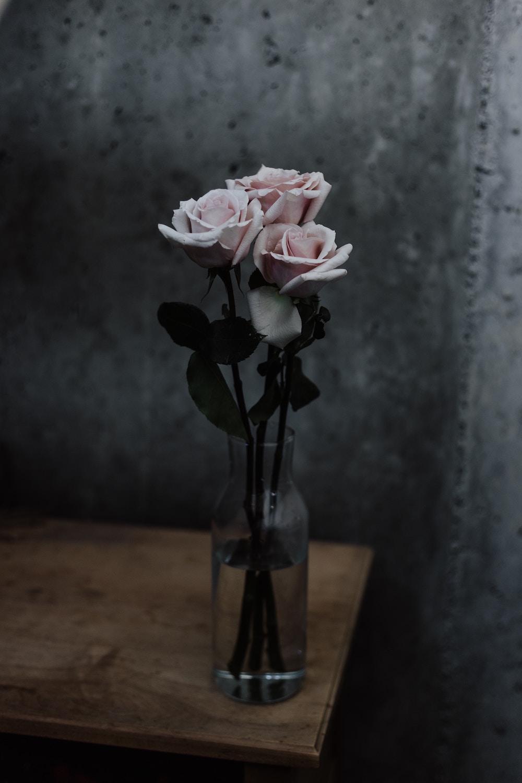 Pink-Roses-Glass-Vase-On-Wooden-Desk